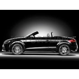 Накладки на пороги TTRS - Audi TT (8J)